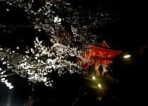 「清水寺夜の特別拝観」