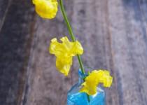 「黄色いスイートピー」